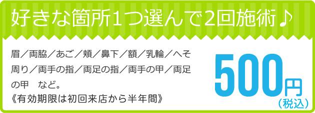 好きな箇所1つ選べて2回施術¥500