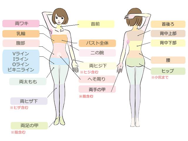 body_price