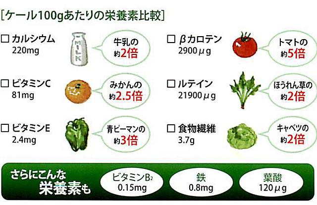 ケール100g当たりの栄養素比較